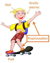 Développement moteur: La proprioception, notre 6ème sens